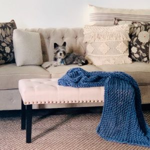how to decorate when living with pets