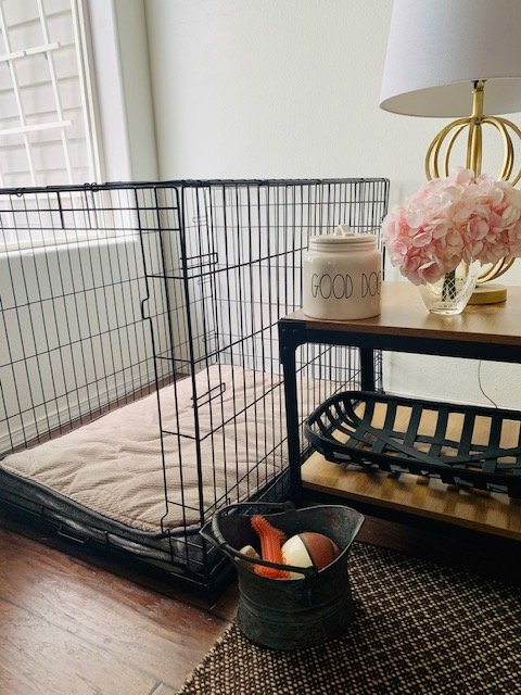 examples of home decorating whn you have pets. kennel, toy storage and treat storage.